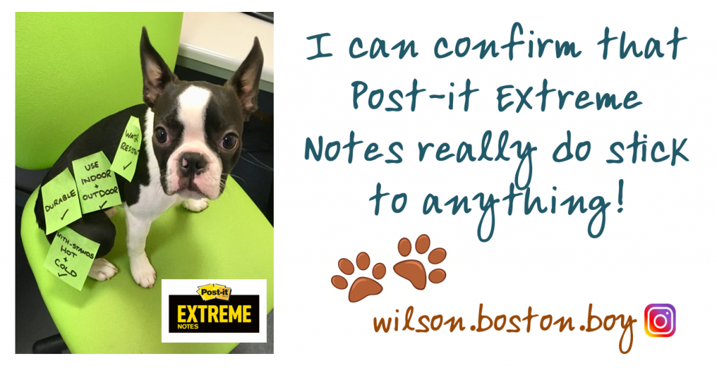 Wilson Post it Extreme twitter